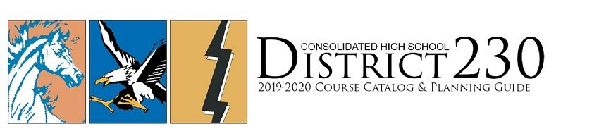 Consolidated High School District 230